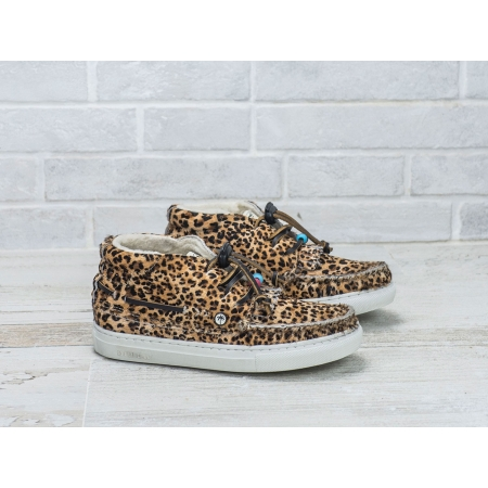 LANDOM HI KIDS 3 - CHEETAH
